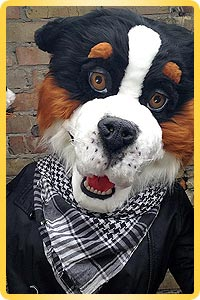 Fursuit Berner dog