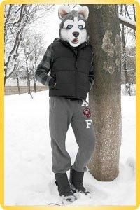 Fursuit Husky